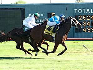 Rare Sunset wins the 2012 Queen of the Green Stakes.