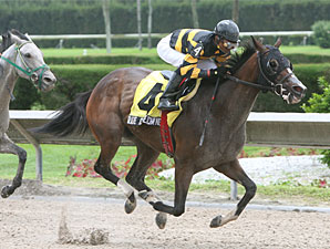 Rate of Exchange wins the 2009 Connie Ann.