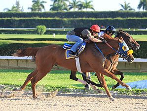 Ravelo's Boy (outside) works at Calder, May 27, 2012.