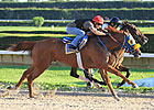 Ravelo's Boy Confirmed for Belmont Stakes