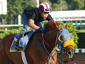 Ravelo's Boy - Calder, June 3, 2012.