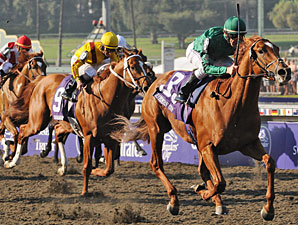 Breeders' Cup TV Ratings Rise Slightly