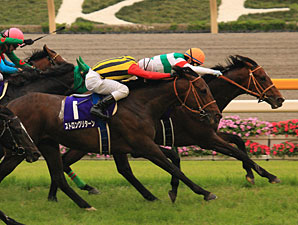 Real Impact Surprises in Japan's Yasuda Kinen