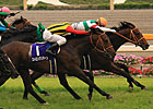 Real Impact Surprises in Japan&#39;s Yasuda Kinen