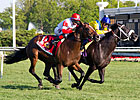 Seven are Pre-Entered in Arlington Million