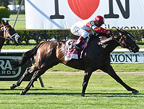 Real Solution Runs Down Manhattan Rivals