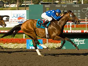 Rebellion scored by 1 1/2 lengths in the Ack Ack Handicap (gr. III) June 7 at Hollywood Park.