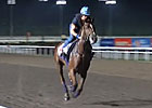 Singapore - Red Cadeaux &amp; Robin Trevor-Jones