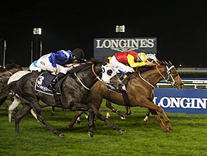 Red Duke wins the 2014 Longines Conquest Classic.