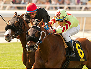 Red Outlaw wins the Baffle Stakes.