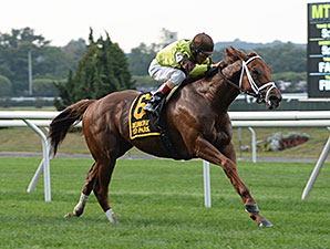 Red Rifle wins the 2014 Yankee Affair Stakes.