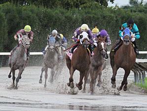 Redbud Road wins the 2011 Desert Vixen Division of the FL Stallion Stakes.