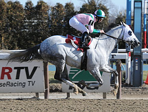 Returning Redding Colliery Wins at Aqueduct