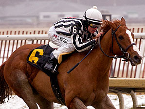 Red's Round Table wins the 2011 Marshua Stakes.