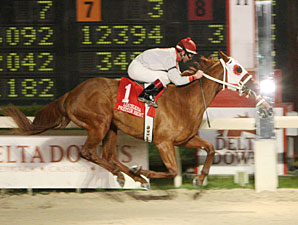 Redsugar wins the 2010 Premier Night Prince.