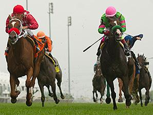 Regal Conqueror wins the 2014 Ontario Damsel Stakes.