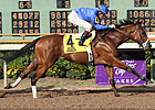 Godolphin Contenders Highlight Nov. 1 Tab