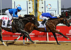 Porter on Pedigrees: Godolphin's Derby Duo
