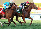 Reload Fires Off Canadian Turf Win