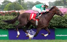 Remarkable News Likely to Retire, Says Owner