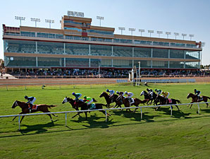 Remington Park Ends Meet With Declines