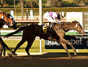 Renee's Titan wins the Santa Ynez.