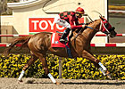 Turf Sprint Exciting, Popular Race