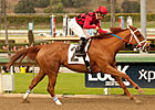 Reneesgotzip Zings Santa Ynez Foes