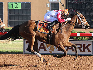 Renewed Vows wins the New Mexico Classic Cup Championship Fillies.