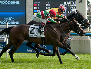 Reporting Star wins the Play the King Stakes.
