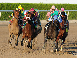 Reveron wins the 2011 Gulfstream Park Derby.