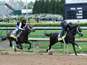 Revolutionary and Charming Kitten work at Churchill Downs April 27, 2013