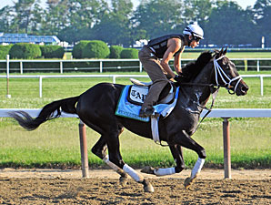 Revolutionary - Belmont Park, June 1, 2013.