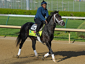 Revolutionary - Churchill Downs, April 26, 2013.