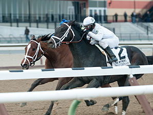 Revolutionary Heads Louisiana Derby Probables