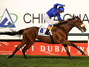 Rewilding wins the 2011 Dubai Sheema Classic.
