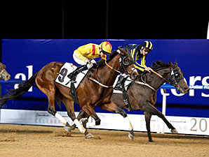 Reynaldothewizard wins the 2015 Al Shindagha Sprint on Feb. 12