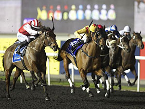 Reynaldothewizard wins the 2013 Meydan Golf Trophy.