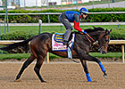 Baffert Horses Breeze in Weather Break