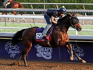 Rich Tapestry - Breeders' Cup 2014