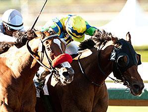 Rich Tapestry wins the 2014 Santa Anita Sprint Championship.