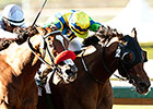 Rich Tapestry Weaves Santa Anita Surprise