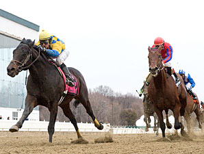 Richard's Kid wins the 2009 John Campbell Handicap.