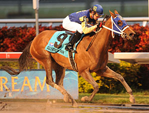Richiegirlgonewild wins the 2010 Old Hat Stakes.