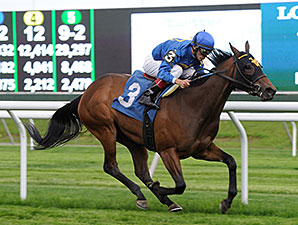 Richies Party Girl wins the 2014 Wait a While Stakes.