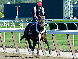 Ride On Curlin Posts 'Super' Belmont Breeze
