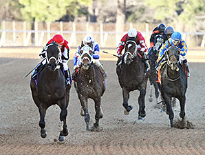 Ride On Curlin - Allowance Win, January 12, 2014.