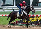 Ride On Curlin Turns in Preakness Breeze