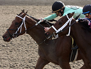 Right To Rule wins the 2009 Pontalba.