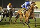 &#39;Riley&#39; Springs Upset in Zabeel Mile